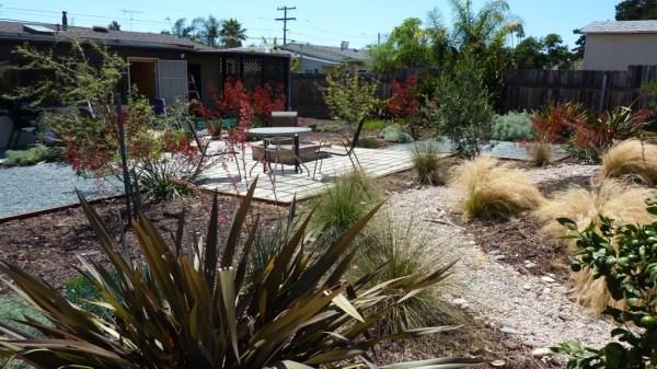 san diego drought tolerant garden