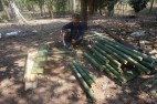 Splitting bamboo