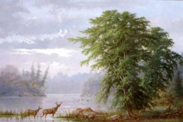 Muskoka, 1875. Oil on canvas, (54 x 80.6 cm). OA no. 619842