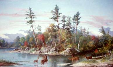 Muskoka Scene, No date. Oil on cardboard, (91.4 x 149.9 cm). OA no. 619789