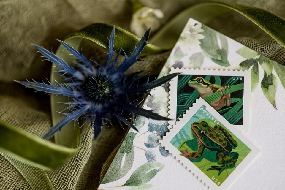 Green Wedding Details for a Leap Day Wedding at Briar Patch B & B in Middleburg, VA by Erin Tetterton Photography