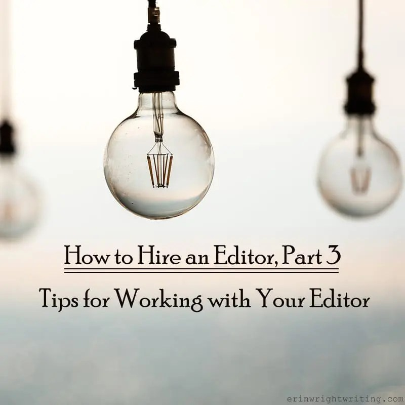 How to Hire an Editor, Part 3: Tips for Working with Your Editor | Image of Light Bulbs against Light Background