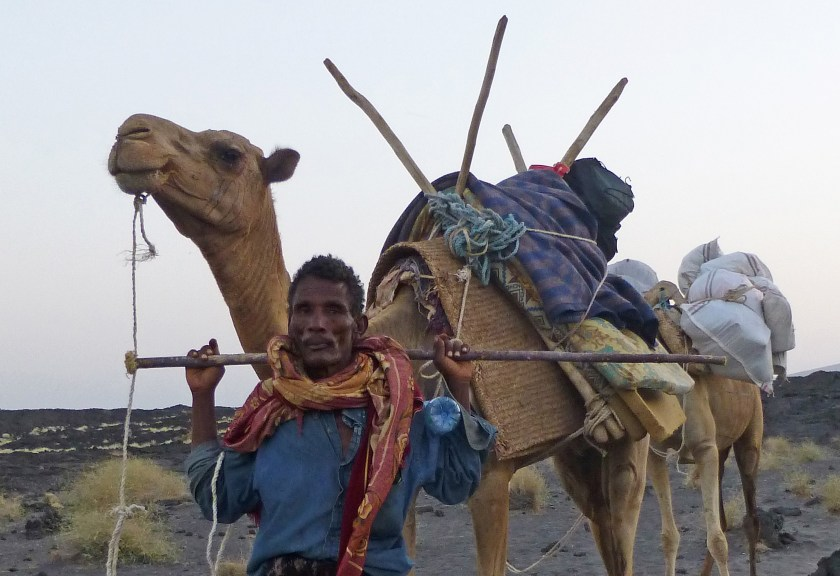 Afar with camels