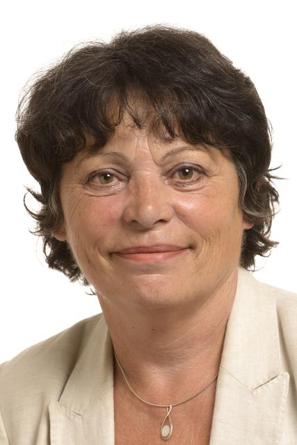 Michele RIVASI - 8th Parliamentary term