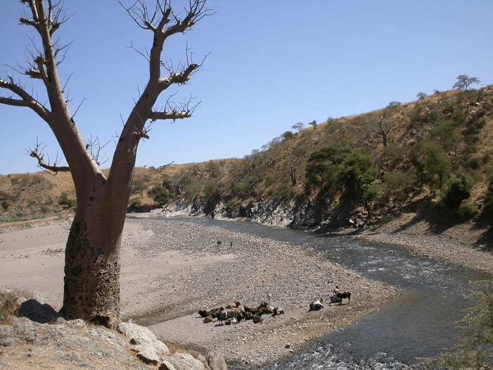 Zamra river
