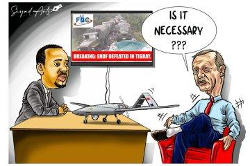 Abiy Erdogan cartoon