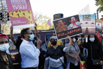 Tigray Protest Washington