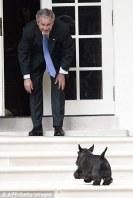 George Bush también tuvo mascota presidencial