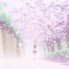 La secuela del anime Cardcaptor Sakura