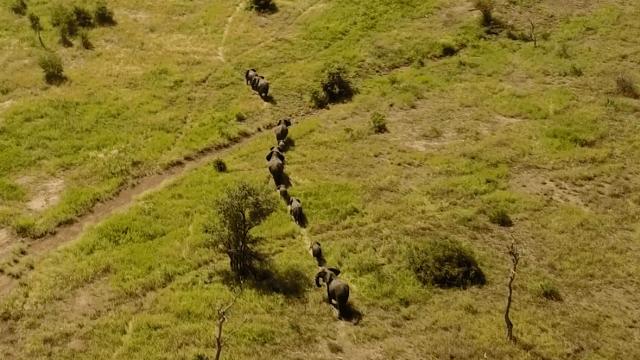 Este dron tomó un video mágico de Sudáfrica desde las alturas