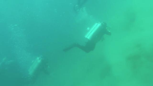 Buzos capturan en video cómo se ve un temblor en el fondo del océano