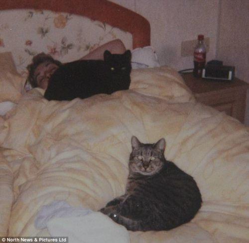 Nutmeg, el gato que vivió 32 años