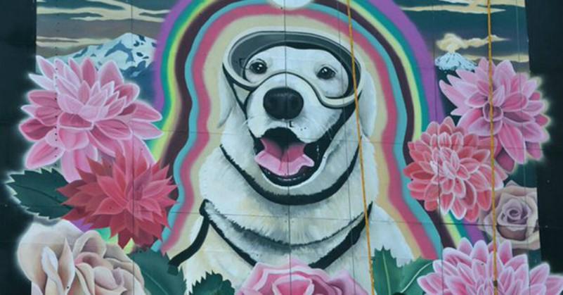 Frida perrita rescatista inmortalizada en un mural en la CDMX