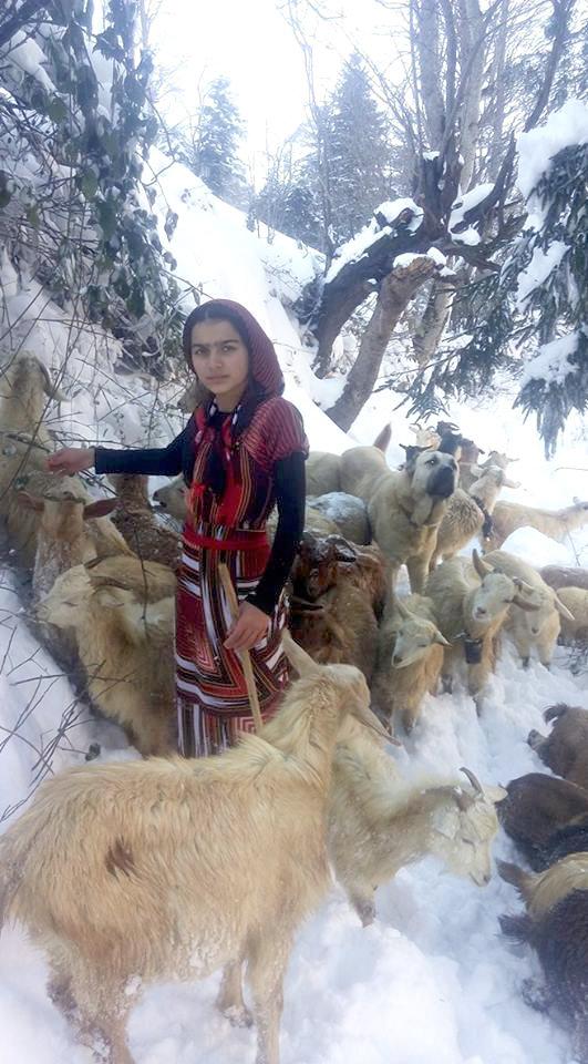 Hamdü Sena Bilgin, niña turca pastora de cabras
