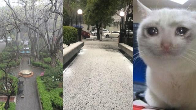 Reacciones de la primera lluvia del año en la CDMX