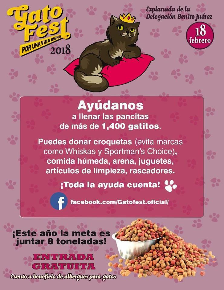 Donaciones para el Gato Fest 2018