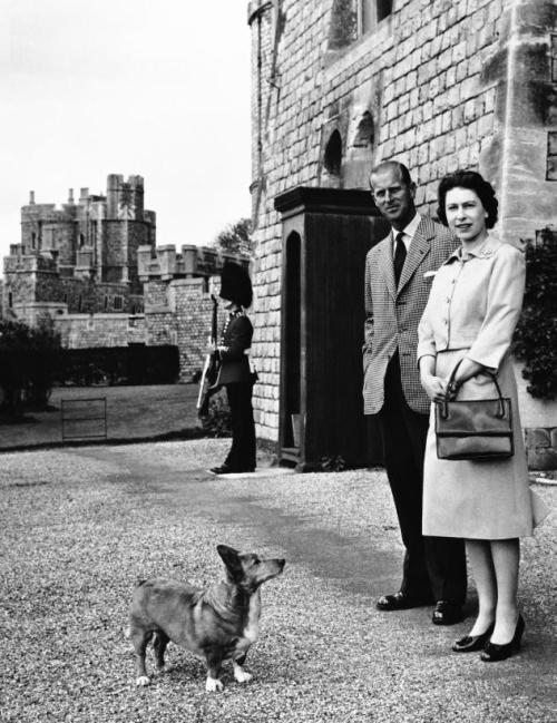 La reina Isabel II perdió a su último perro