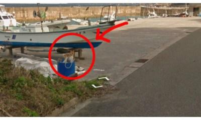 Perrro persigue a camión de Google Street view