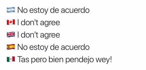 Los-mejores-memes-de-cómo-se-dice-en-México-1