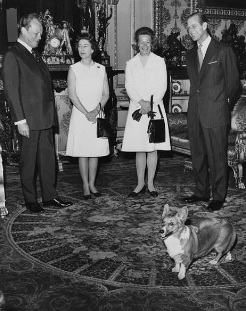 La reina Isabel II perdió a su último corgi Willow