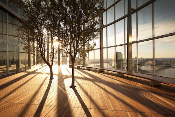 Ejemplos increíbles de que la arquitectura y la naturaleza pueden llevarse bien
