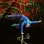 Cirque-du-Soleil-Parque-Temático-Nuevo-Vallarta-Circo