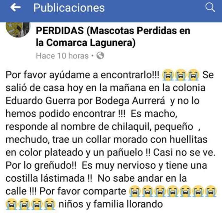 eliza-valles-atropella-perro-burla-multimedios-facebook