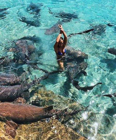 Quería una foto cool para Instagram, terminó mordida por un tiburón