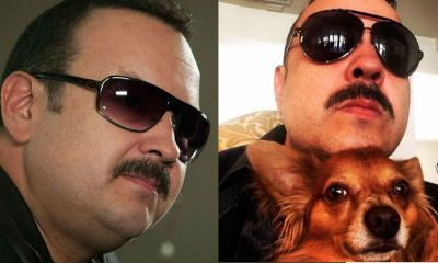 Aerolínea pierde al perrito de Pepe Aguilar; se lo entregan muerto