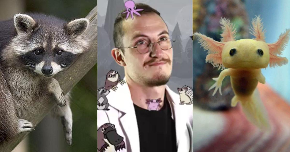 Los 5 mejores videos de animales del Dr. Pangolín