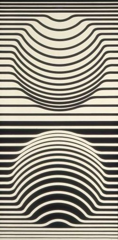 Ilusion optica platos desechables