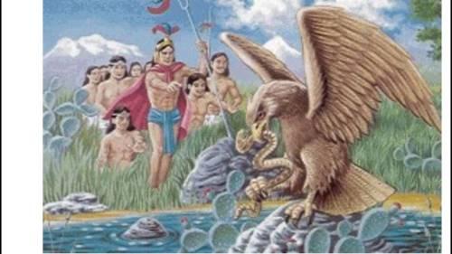 Captan a Aguila devorando a serpiente en obra del NAIM en Texcoco