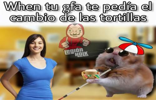 Memes del Hamster ciego