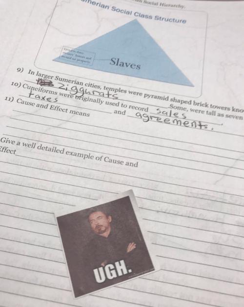 Maestra utiliza memes para calificar a sus alumnos
