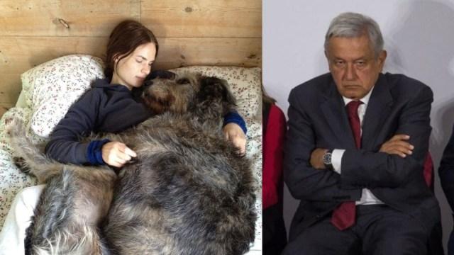 Mujeres duermen mejor con sus mascotas que con sus novios