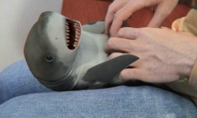 oscuro-origen-detras-cancion-baby-shark