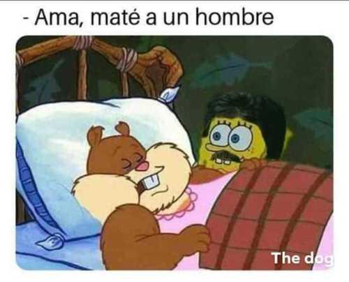 Memes de Arenita dormida