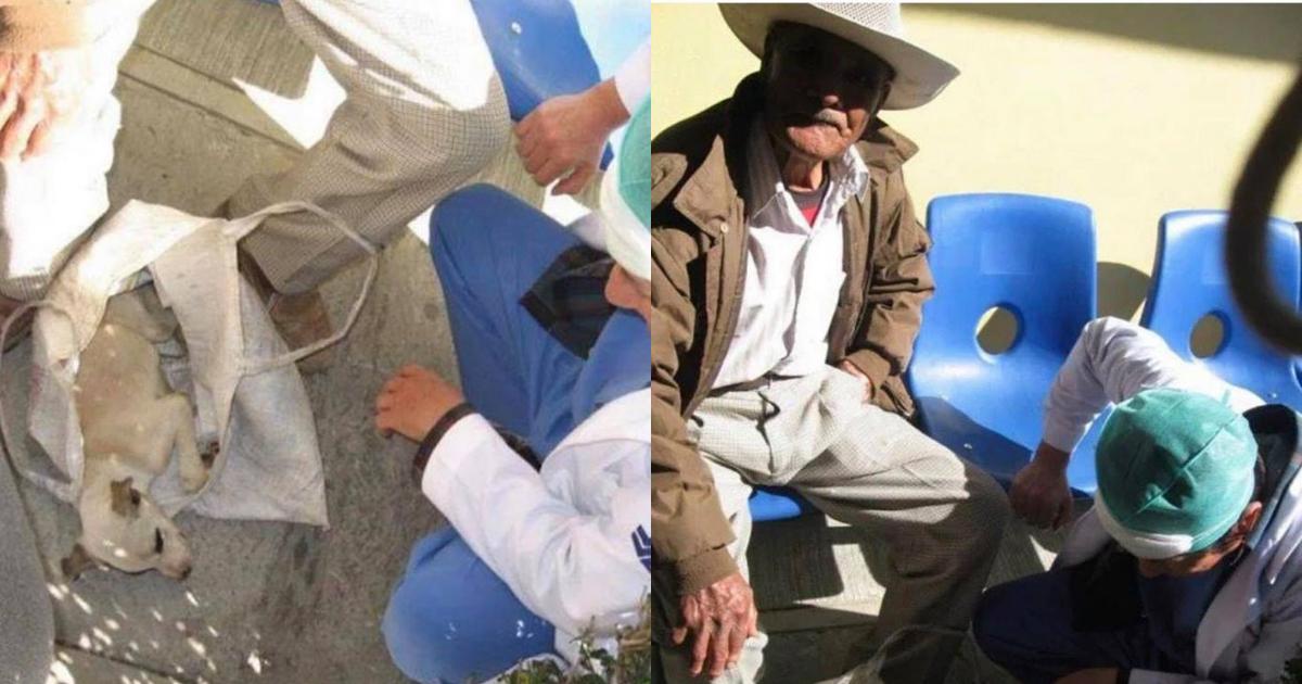 Viejito Lleva Perrito Al Hospital, Anciano Lleva Perro Hospital, Hospital, Huejotzingo, Puebla, Anciano