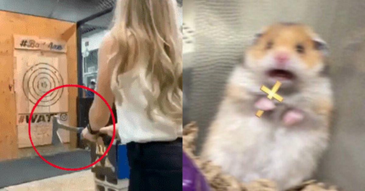 VIDEO: chica lanza hacha en tiro al blanco y le regresa