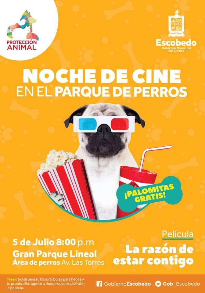Función de cine gratis con perros en Escobedo, Nuevo León