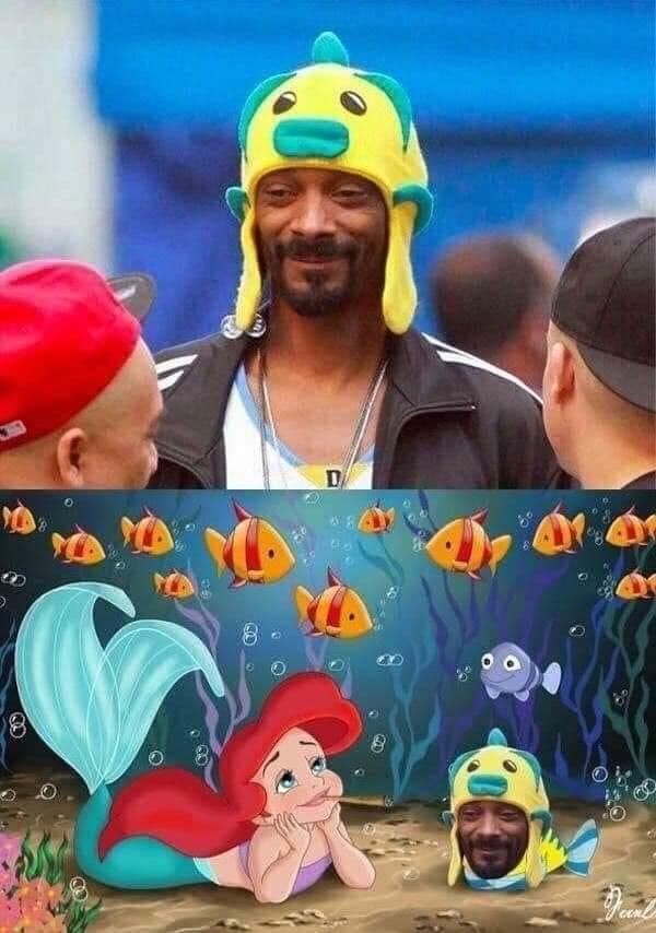 Memes de la nueva Sirenita