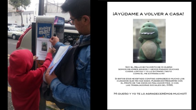 10-09-2019,Niño perdio peluche dinosaurio, niño posted imagen dinosaurio