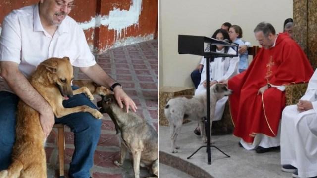 Foto Sacerdote Rescata Perros 26 Octubre 2019