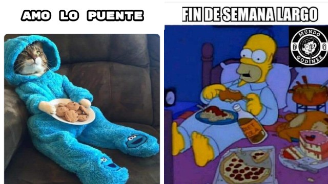Memes Del Puente Festivo, Memes Puente 20 De Noviembre, Memes De Buen Fin, Memes Chistosos, Memes Graciosos, Memes Random