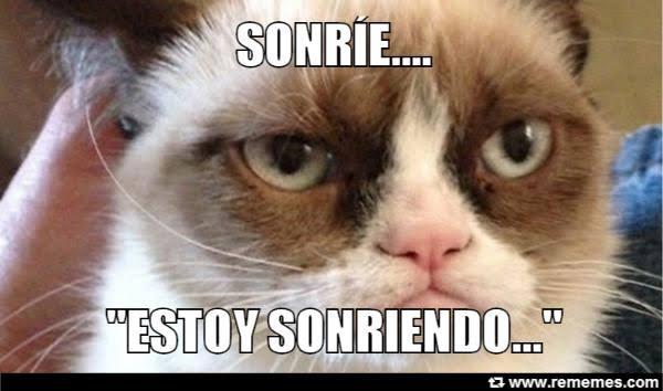 Meme de grumpy cat, el gato enojado de 2012