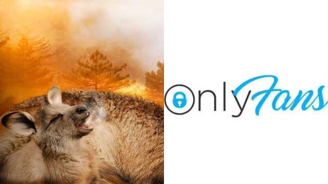 Modelo vende fotos de Only Fans para combatir incendios en australia en 2020