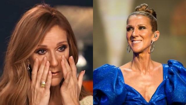 Céline Dion cancela conciertos; podría tener Coronavirus