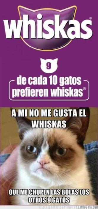 whiskas malo para los gatos