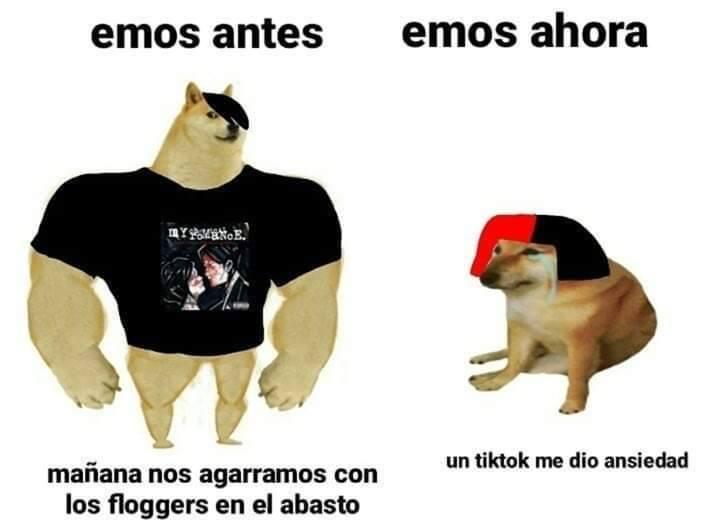 Memes de Cheems y Doge: el antes y ahora con perros