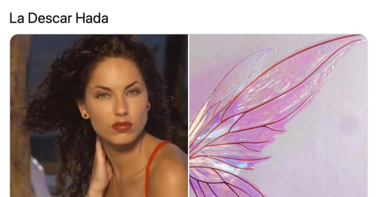 Memes de hada madrina con alas los mejores y más divertidos